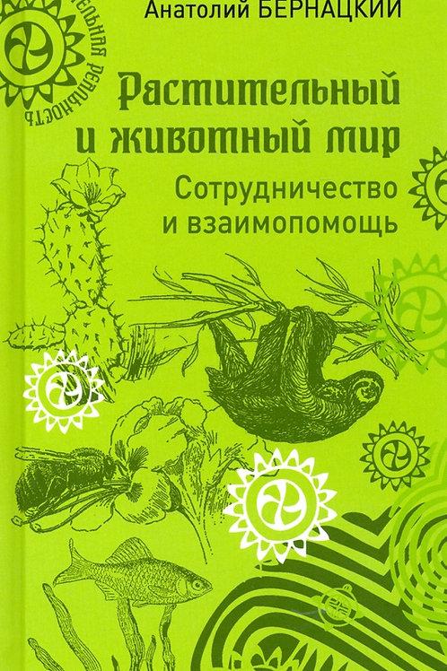 Анатолий Бернацкий «Растительный и животный мир. Сотрудничество и взаимопомощь»