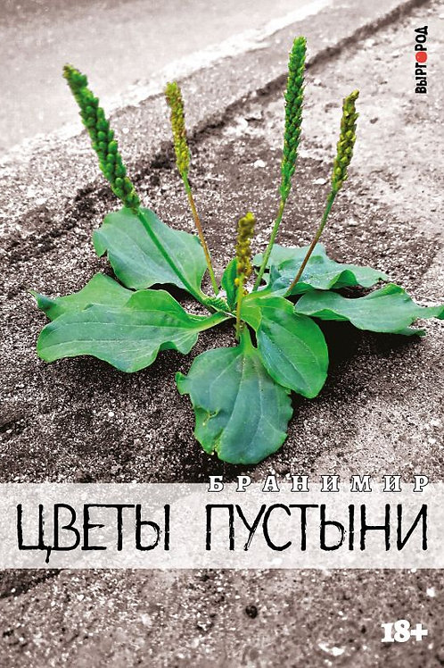 Бранимир «Цветы пустыни»