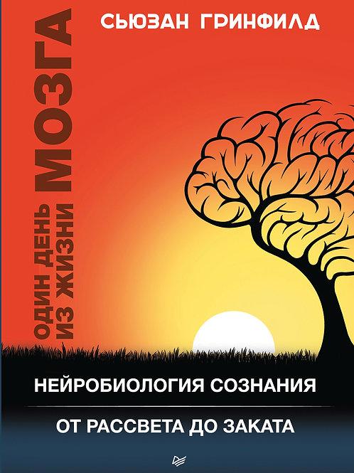 Сьюзан Гринфилд «Один день из жизни мозга»