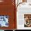 Thumbnail: Соффия Беннет «Расширенная картина»