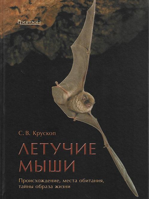 Сергей Крускоп «Летучие мыши»