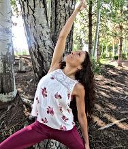 Renee Frye, Owner of Sacred Sol Healing Institute. She is a Shaman Reiki Master Healer and Instructor Mindful Master YogaInstructor MHIR™ Behavior Response System Founder/Educator