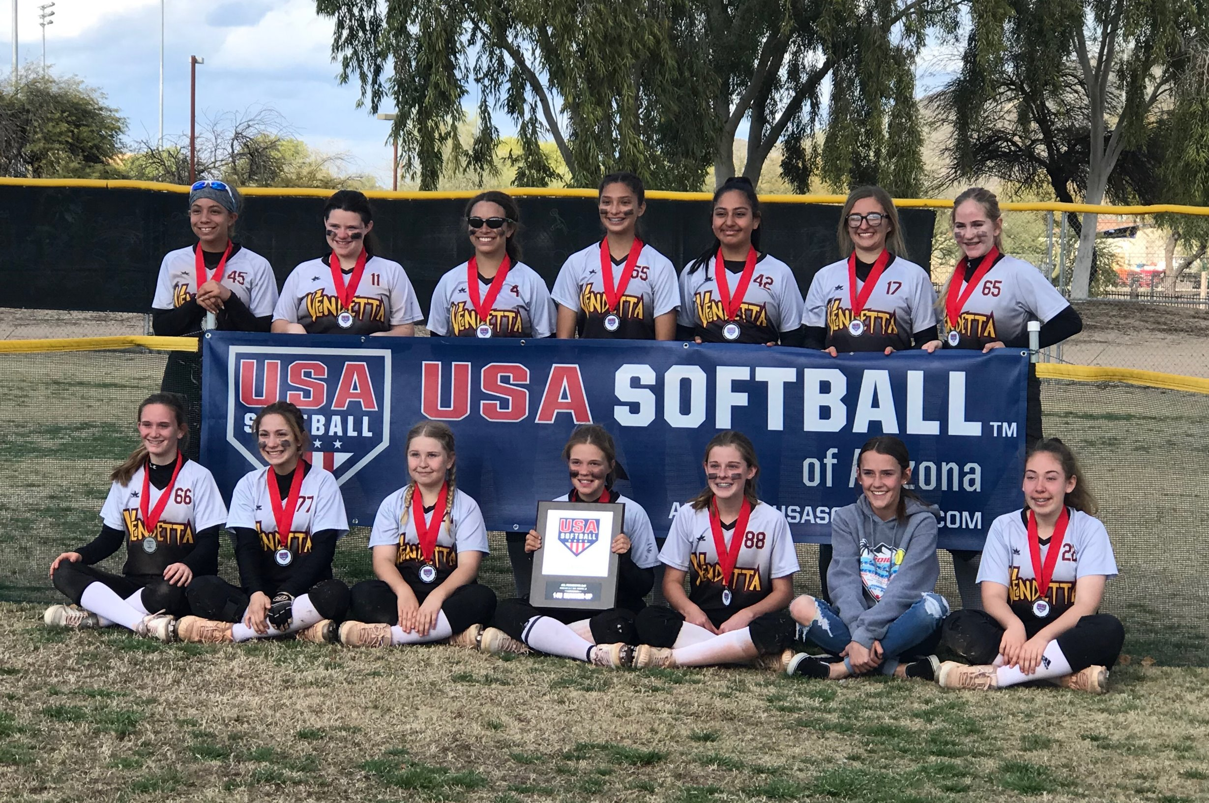 USA softball Banner_edited