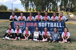 USA softball Banner_edited