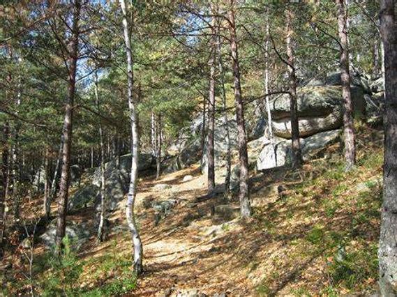 WIRLIG_Naturpark.jpg