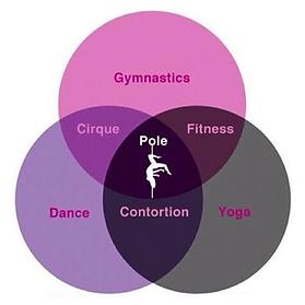 Pole Dance Studio 5