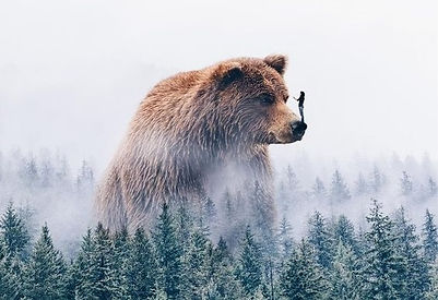 Surreal artwork of a man standing on the nose of a bear.