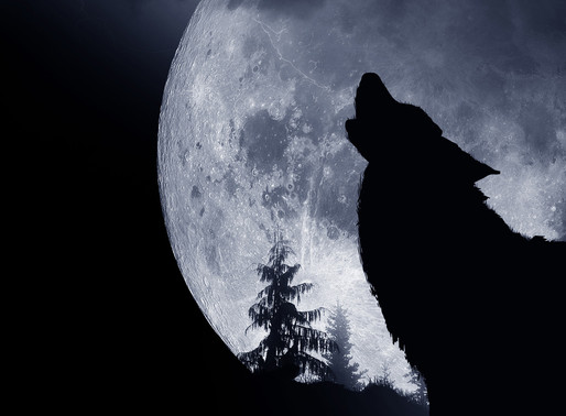 Take the Lamp Shade off and Shine!  February's Full Moon