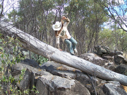 Bushwalking in the Outback