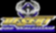 Desert Pro Logo.png