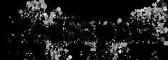 RedSapataTanzfabrik_Logo_FIN_neuTranspar