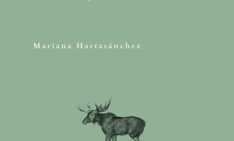 Ebook Acantilado/El Acertijo de Frau Heimlig
