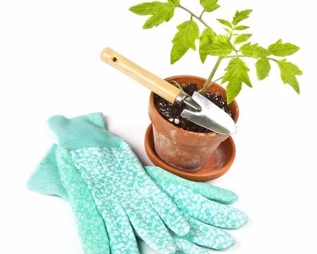 Ateliers de jardinage