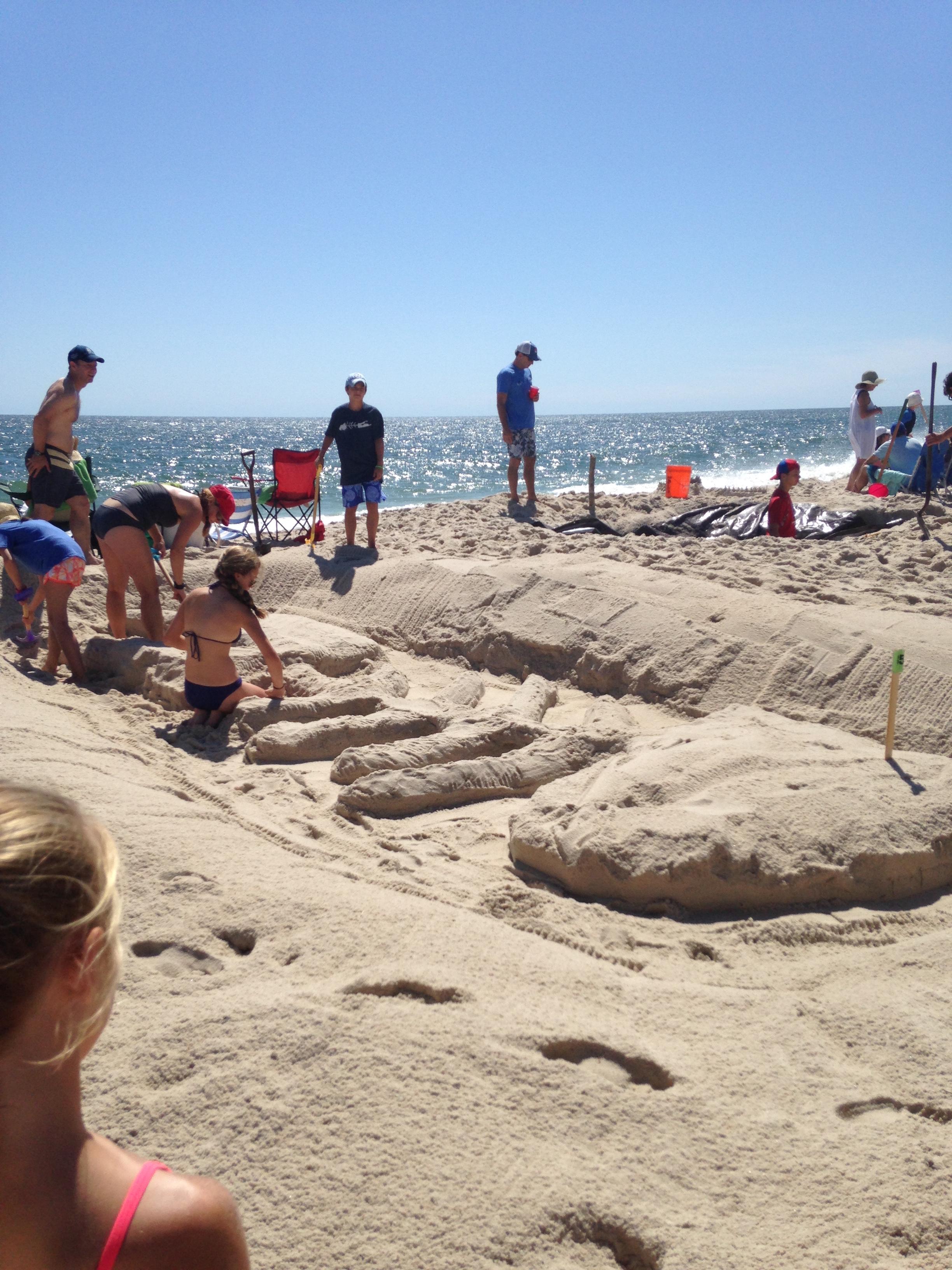 sandcastles 2.jpg