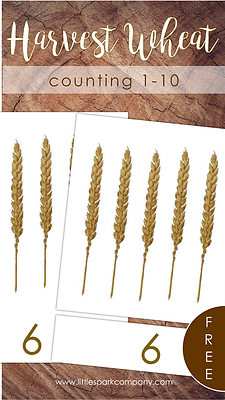 Counting Wheat.png