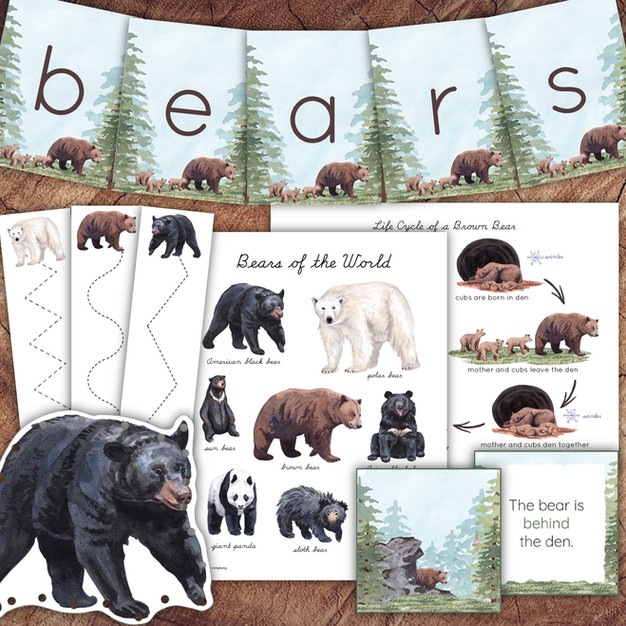 Beautiful Bears Bundle