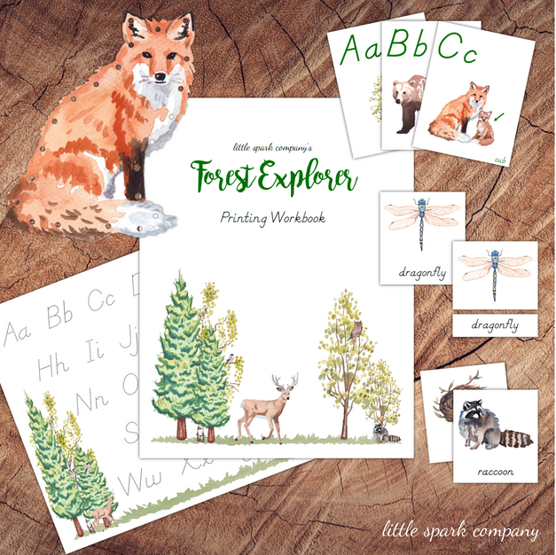Forest Explorer Printing Workbook