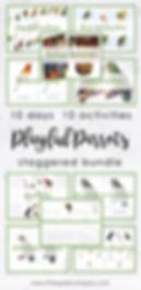Parrot Bundle Image for Website.png