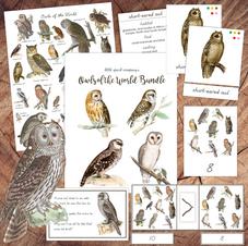 Owls of the World Bundle