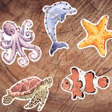 Ocean Animals Lacing