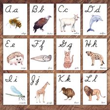Spanish Cursive Alphabet Cards