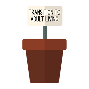 Transition to Adult Living.png