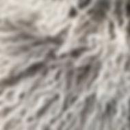 Grey Snowtop.jpg