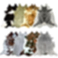 all cowhides2.jpg
