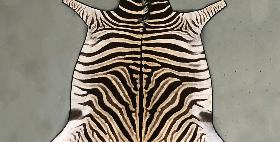 South African Zebra Hide 10 $1290