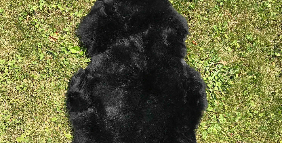 Australian Sheepskin Single Black 2'x3'