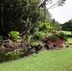pond and grounds.JPG