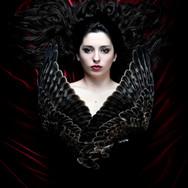 Velvet Wings