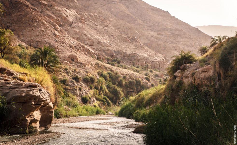 Wadi al-Hasa in Western Jordan, in Old Testament times known as Wadi Zered. Photo by Einat Klein of TravelLab.com.