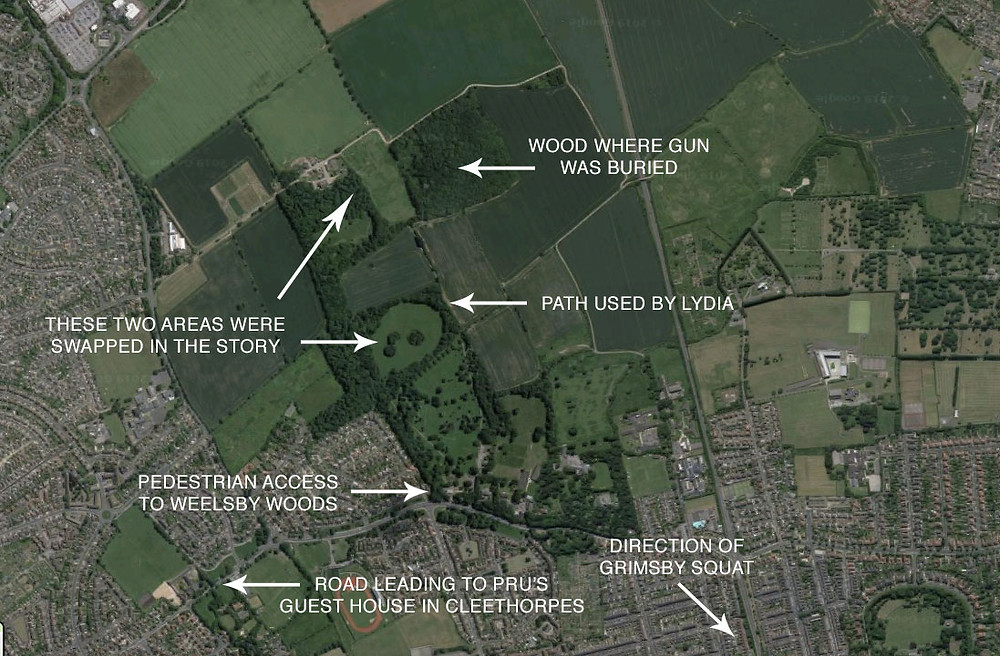 Google Maps satellite image of Weelsby Woods in Grimsby. Annotated by Matthew James Hunt.