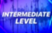 RDC-Intensive-Insta-Graphic-INTERMEDIATE