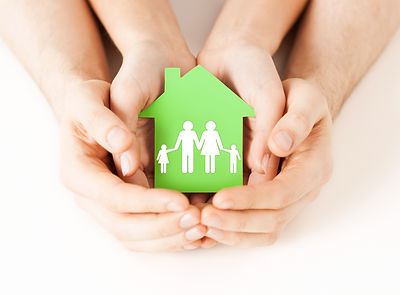Your Personal Energy Audit Consultant Home Family Hands Green Living Solutions