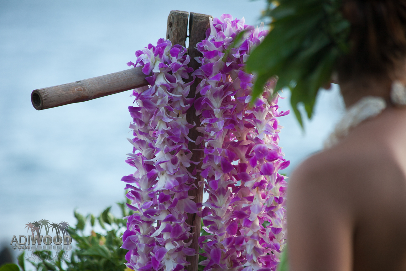 Get Lei'd in Hawaii