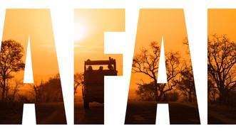 African Safari 101