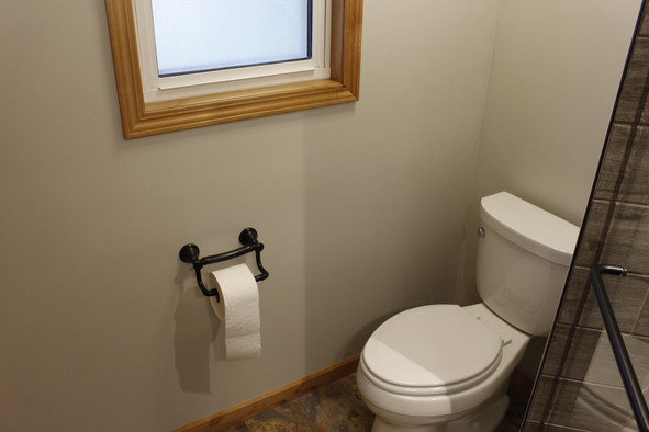 Grab Bar and Toilet paper combo
