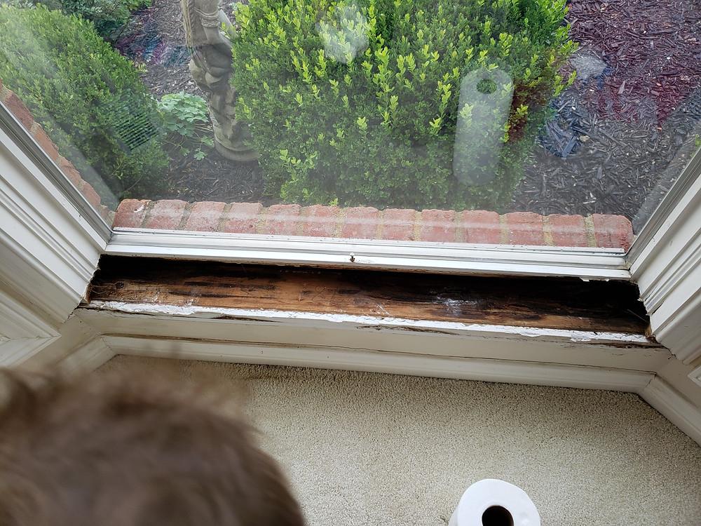 Rotten Window Sill