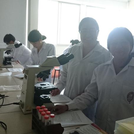 La inclusión de mujeres en las carreras de Ciencias y Tecnología en Brasil