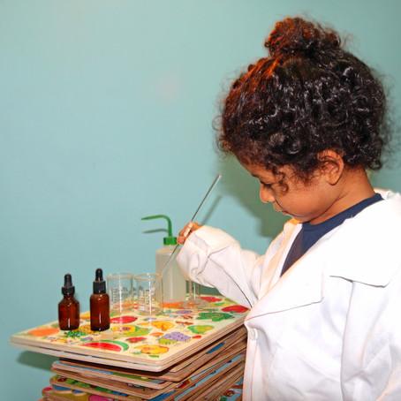Alfabetización Científica: Una breve reseña