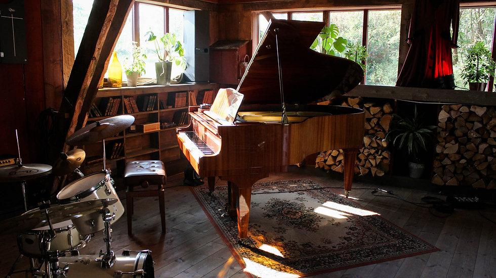 grand piano .jpg
