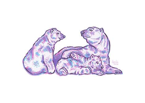 Christmas Card - Polar Bear Family