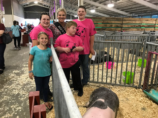 Pigs, People and Perseverance – All for One Swine Show at the Wisconsin State Fair