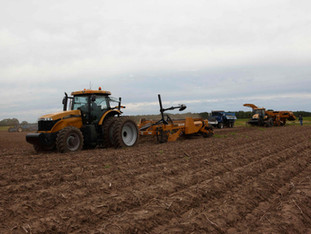 Wisconsin Potato Harvest is in Full Swing