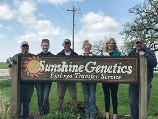 Sunshine Genetics - Caring for the Cows that Everyone Cares About