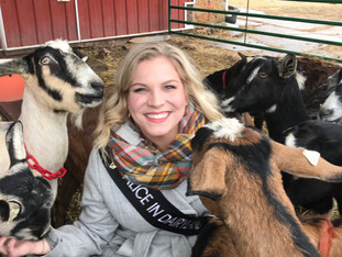 Wisconsin's Dairy Goat Industry Ranks #1