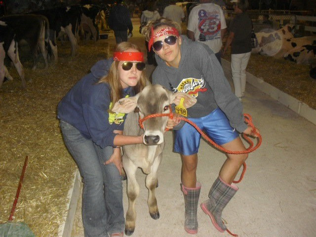 Joanna and I pose with a cute Brown Swiss calf. County fairs are a great way to make new friends and have fun!