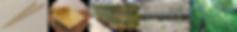 竹林整備①-5.png